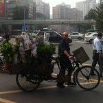 Dreirad China Pflanzen